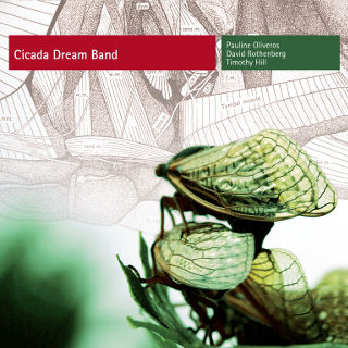 Cicada Dream Bank